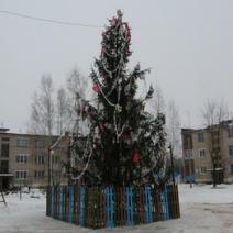 Фото Правдинска и окрестностей - 47