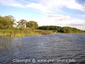 Остатки пристани Сергеевичского озера после разработки сапропелей
