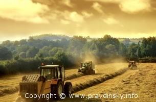 Органическое земледелие. Преимущество органического земледелия — ЭМ-препараты