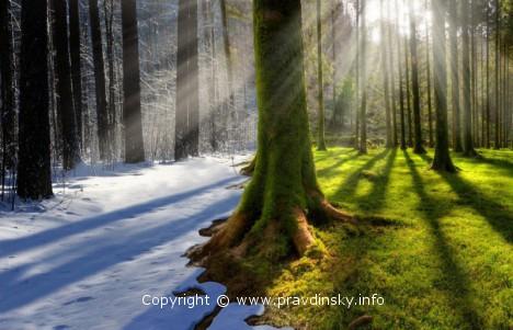 Народные приметы о погоде летом и зимой